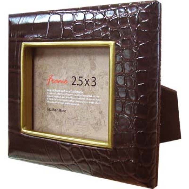 Croco Frame 2.5x3